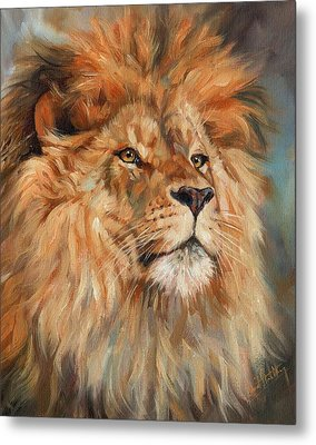 Lion Metal Print by David Stribbling