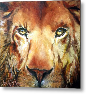 Lion Eyes Metal Print by Judy Downs
