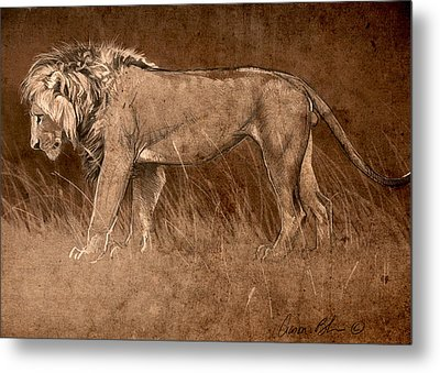 Metal Print featuring the digital art Lion Sketch by Aaron Blaise