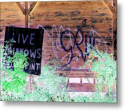 Live Minnows Metal Print by Dietrich ralph  Katz