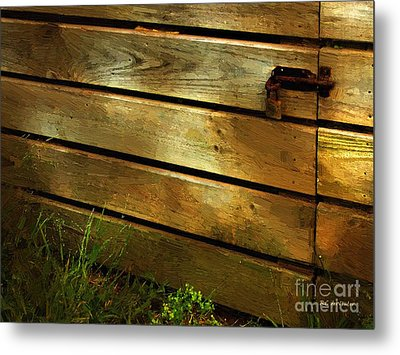 Locked Away Metal Print by RC deWinter
