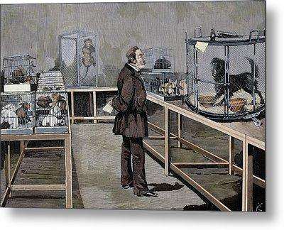 Louis Pasteur (1822-1895 Metal Print