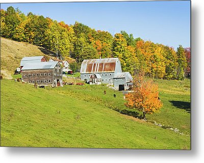 Maine Farm On Side Of Hill In Autumn Metal Print by Keith Webber Jr