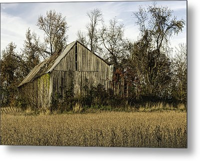 Maryland Barns Metal Print