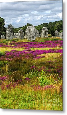 Megalithic Monuments In Brittany Metal Print by Elena Elisseeva