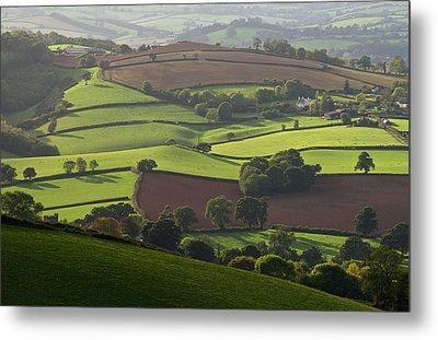 Mid Devon Fields Metal Print by Pete Hemington