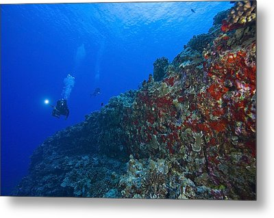 Molokini Maui Hawaii Usa Scuba Diver Metal Print
