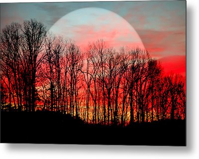 Moon Dance Metal Print by Karen Wiles