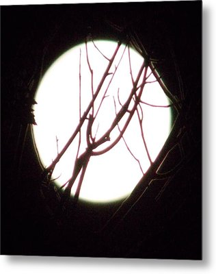 Moonshine 5 Metal Print