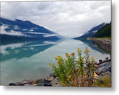 Moose Lake Metal Print