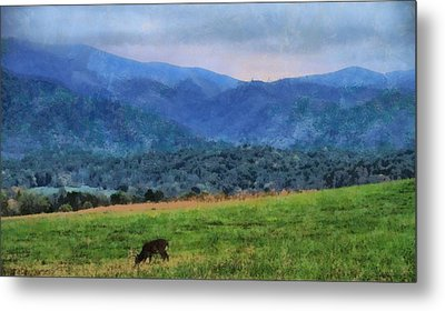 Morning Deer In Cades Cove Metal Print