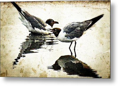 Morning Gulls Seagull Art By Sharon Cummings Metal Print by William Patrick