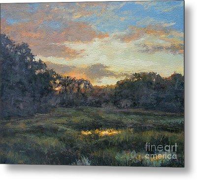 Morning On The Marsh - Wellfleet Metal Print by Gregory Arnett