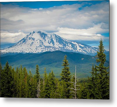 Mt. Adams From Indian Heaven Wilderness Metal Print by Patricia Babbitt