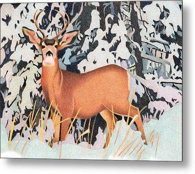 Mule Deer Metal Print by Dan Miller