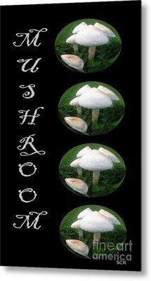 Mushroom Art Collection 1 By Saribelle Rodriguez Metal Print by Saribelle Rodriguez