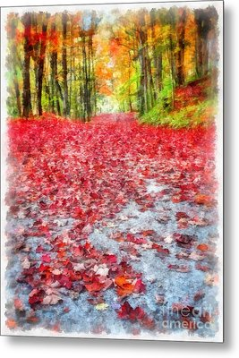Nature's Red Carpet Metal Print