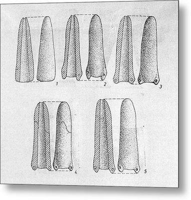 Neolithic Phallus Figures Metal Print