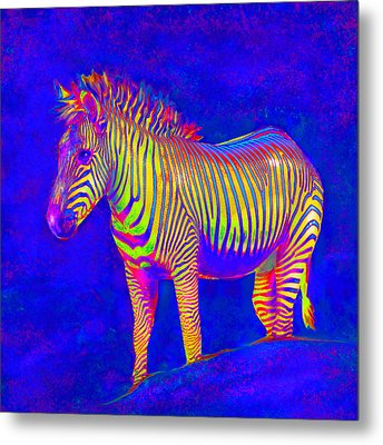 Metal Print featuring the digital art Neon Zebra 2 by Jane Schnetlage