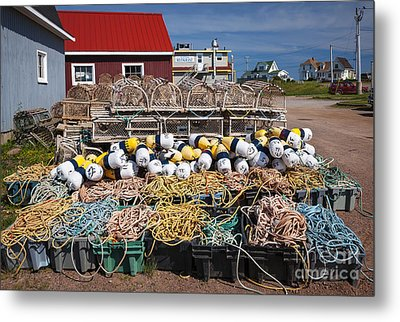 North Rustico Metal Print by Elena Elisseeva