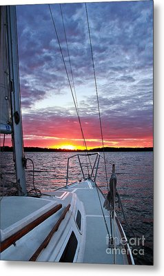 Off Into The Sunset Metal Print by Jill Hyland