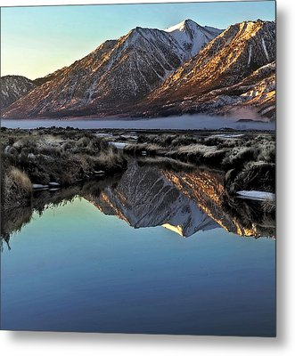 Metal Print featuring the photograph On A Winter's Day by Nancy Marie Ricketts