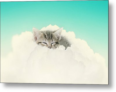 On Cloud Nine Metal Print by Amy Tyler