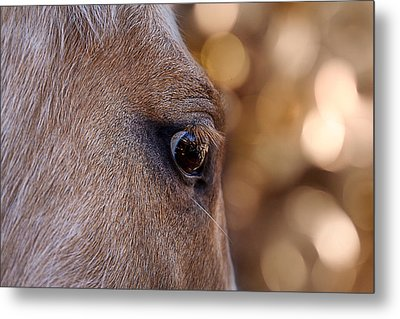 On Watch Metal Print