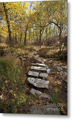 One Step At A Time Metal Print by Iris Greenwell