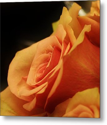 Orange Supreme Metal Print by Bruce Bley