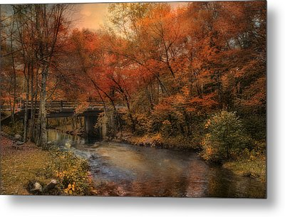 Over The River Metal Print by Robin-Lee Vieira