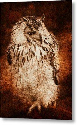 Owl Metal Print by Svetlana Sewell