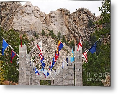 Patriotic Faces Metal Print by Mary Carol Story