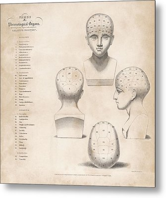 Phrenology Head Regions Metal Print by King's College London