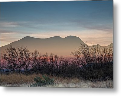 Pink In The Valley Metal Print