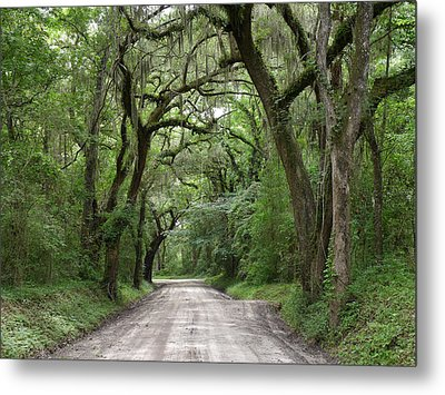 Plantation Road II Metal Print