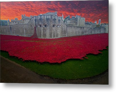 Poppies Tower Of London Metal Print