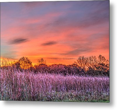 Illinois Prairie Moments Before Sunrise Metal Print