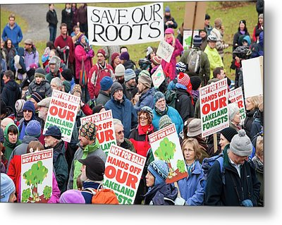 Protest Against Public Forest Selloff Metal Print by Ashley Cooper