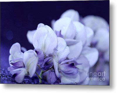 Pure Purple Metal Print by Krissy Katsimbras