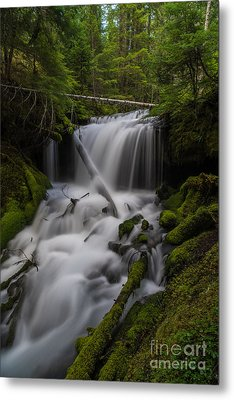 Quiet Falls Metal Print by Mike Reid