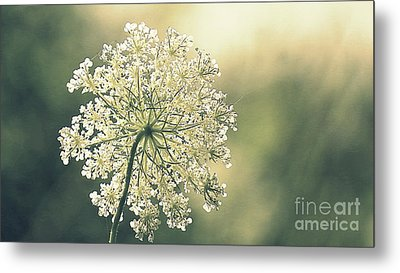 Quiet Moment Metal Print by France Laliberte