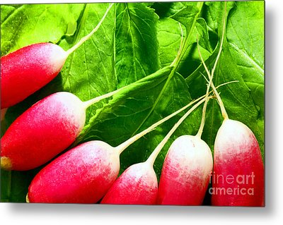 Radishes Metal Print by Craig B