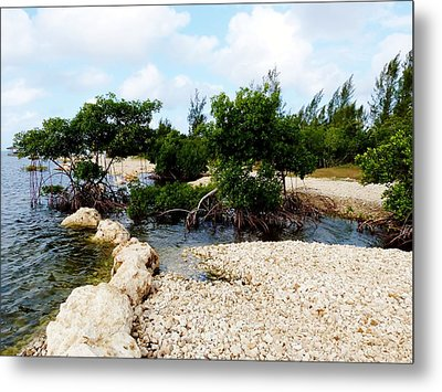 Metal Print featuring the photograph Reclamation 6 by Amar Sheow