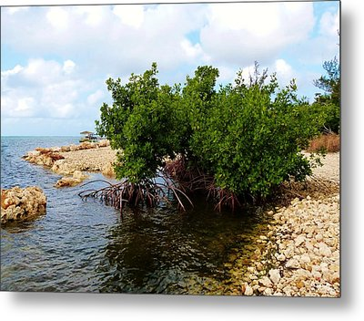 Metal Print featuring the photograph Reclamation 7 by Amar Sheow