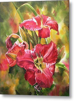 Red Daylilies Metal Print by Alfred Ng