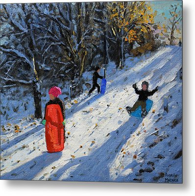 Red Sledge Metal Print by Andrew Macara