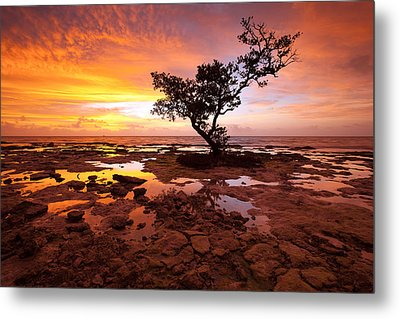 Metal Print featuring the photograph Reverence  by Patrick Downey