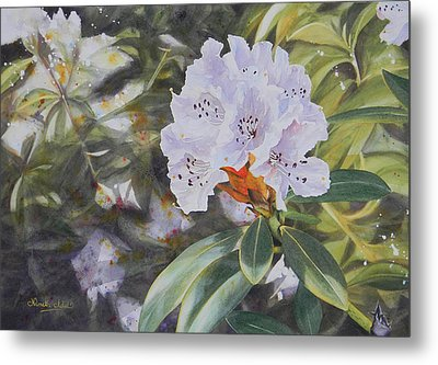 Rhododendron Jungle Metal Print by Adel Nemeth