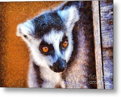 Ring Tailed Lemur Metal Print by George Atsametakis